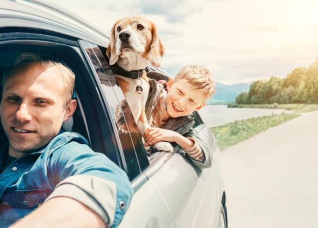 Vader, zoon en hond in auto op vakantie